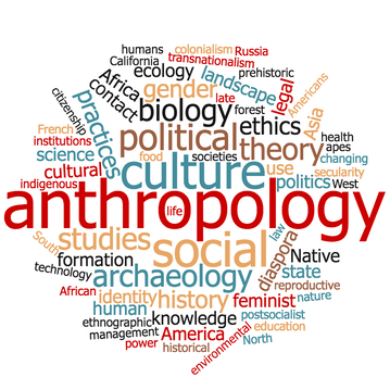Anthropology Subfields